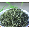 绿茶信阳毛尖